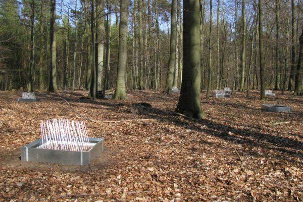 Eine Zecken-Beobachtungsstation in einem Wald