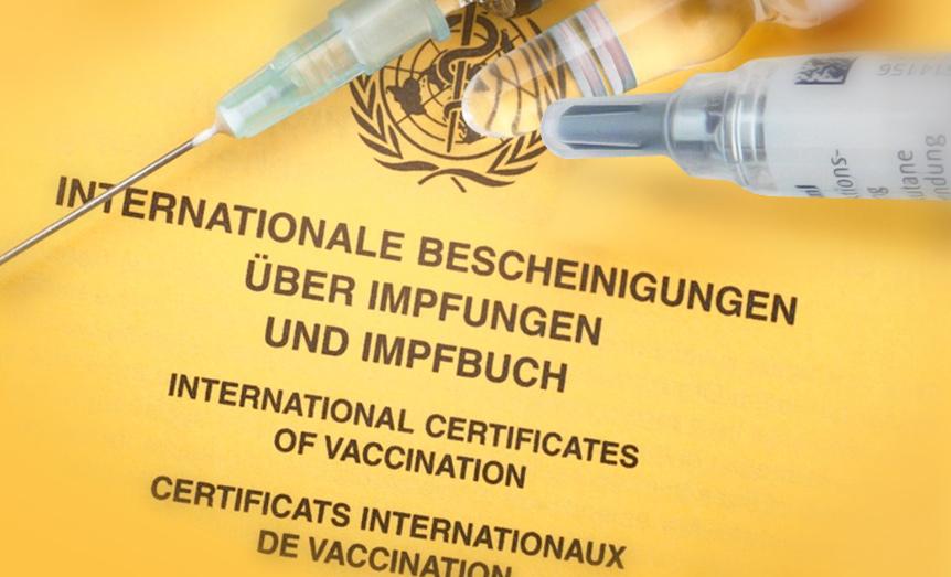 Bild eines Impfpasses