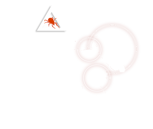 Grafik: Wohin Zecken Hunde stechen